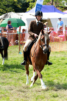 Winslow Horse Show 2017 (after midday)